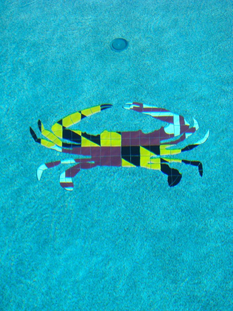 If you live in Maryland you can see examples of Maryland Pride on car stickers everywhere - why not your pool?